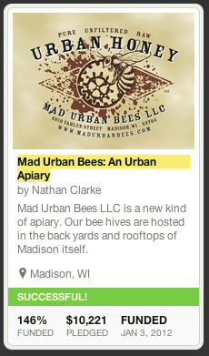Madison Urban Bees